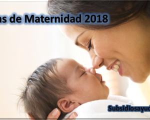 ayudas de maternidad
